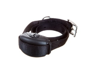 leash trainers for dogs